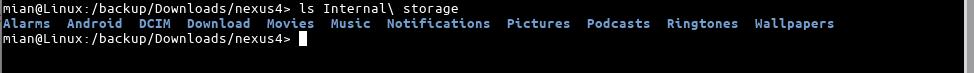 In-terminal-nexus4 <>